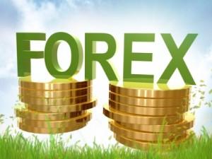 img256972_stoimost_valyutyi1-300x225 Стоит ли торговать «экзотическими» валютами на форекс?
